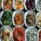 Typische griechische Vorspeisen, Hauptspeisen und Suppen